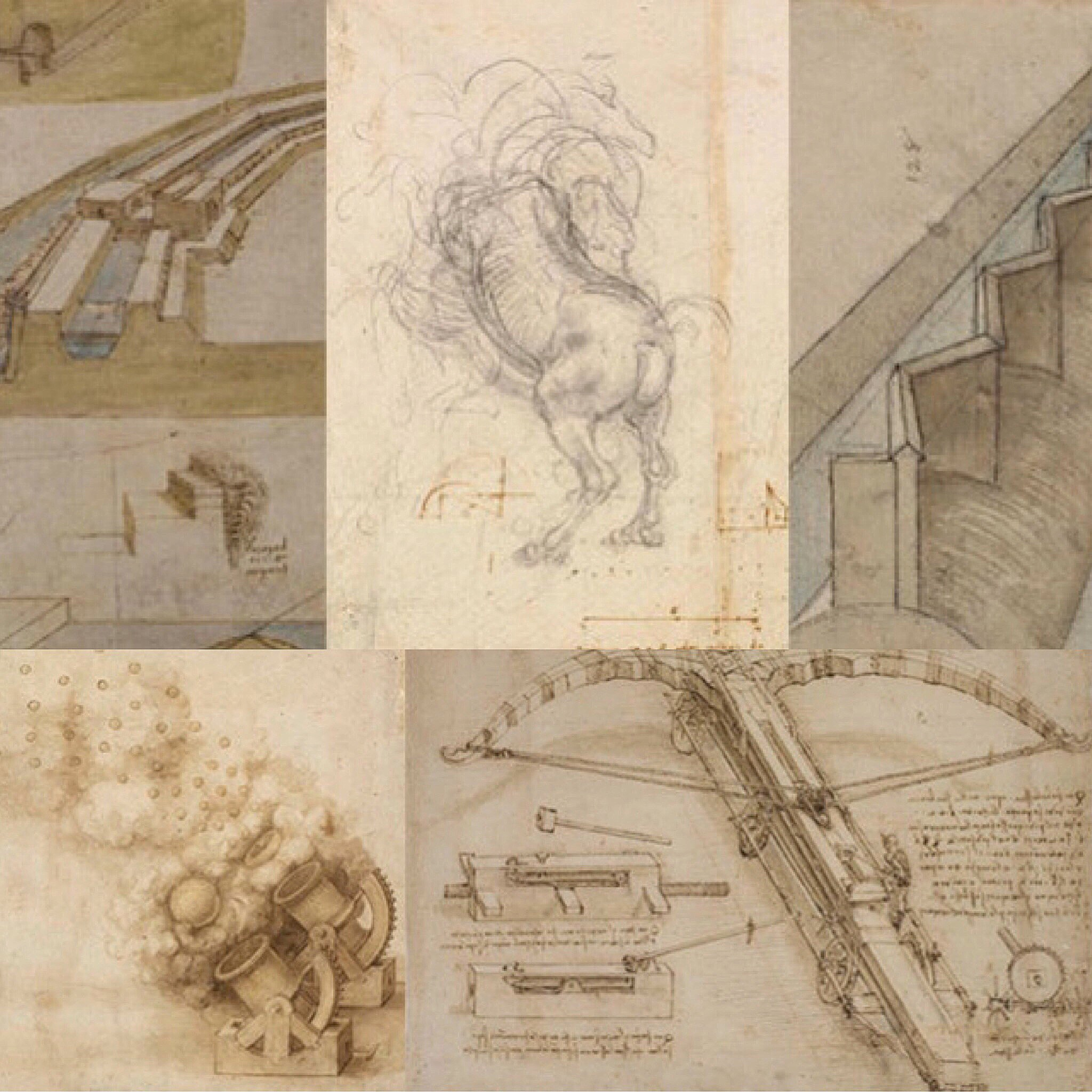 The year of Leonardo da Vinci started with the Ambrosiana